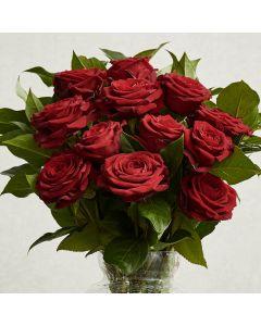 Dozen Red Freedom Roses Bouquet