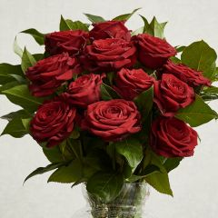 Dozen Red Freedom Roses Bouquet